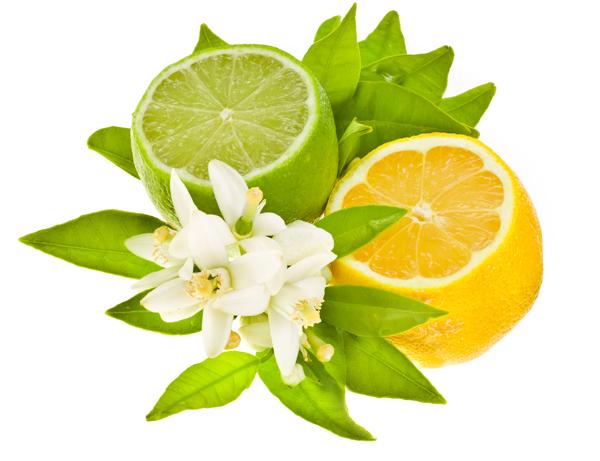 lemon_icon3