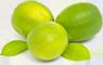 lemon_icon9