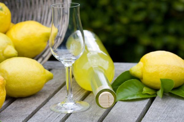 Homemade_limoncello_icon5
