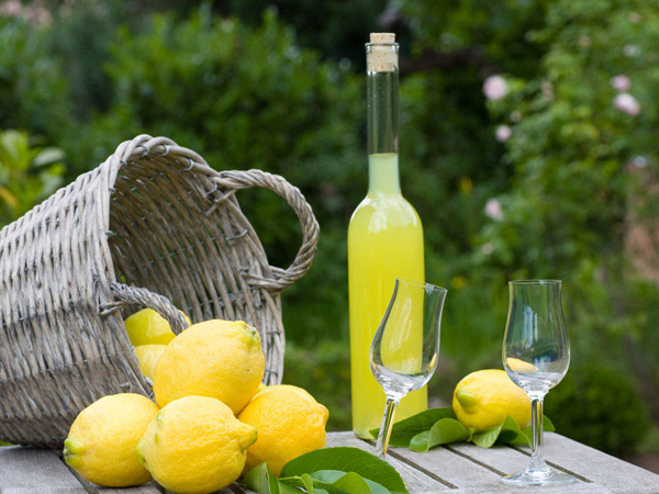 Homemade_limoncello_icon6