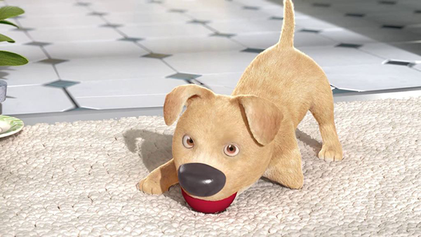 The-Present-Short-Film-icon9