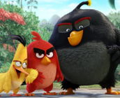 The-Angry-Birds-Movie-icon9
