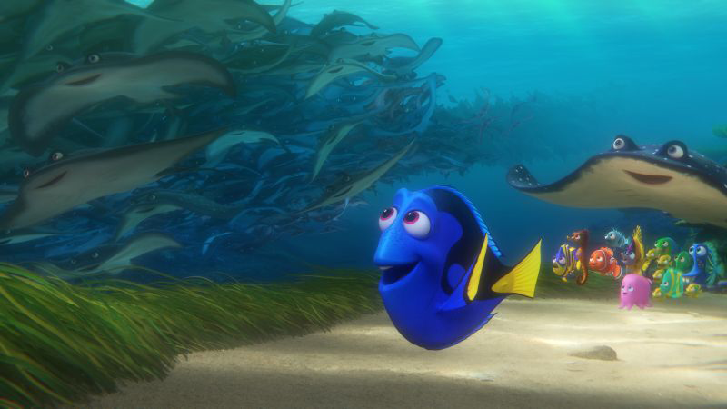 finding-dory-icon7
